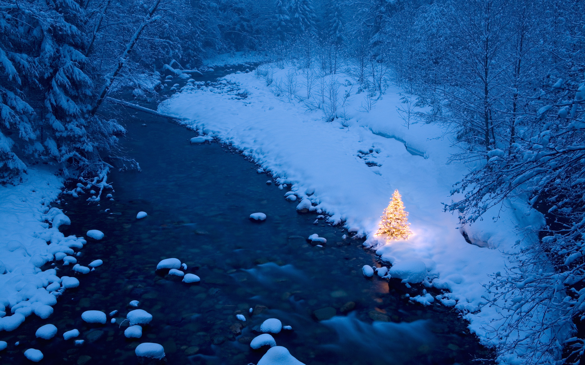 illuminated christmas tree beside a creek in a snow. Black Bedroom Furniture Sets. Home Design Ideas