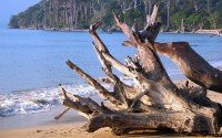 ?????? ?? ??????? ?? (Andaman Beach), The Union Territory of Andaman & Nicobar Islands