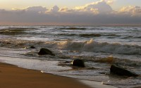 Fale (Waves)