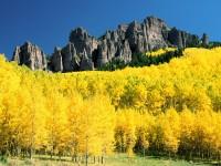 Windows 8 Wallpapers - Autumn 1600x1200 (35)