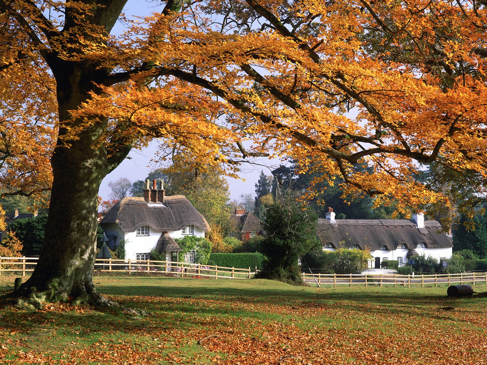 A pack of 75 autumn wallpapers 1600x1200 part 2 hd for Wallpaper home england