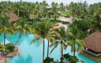 palms in a resort