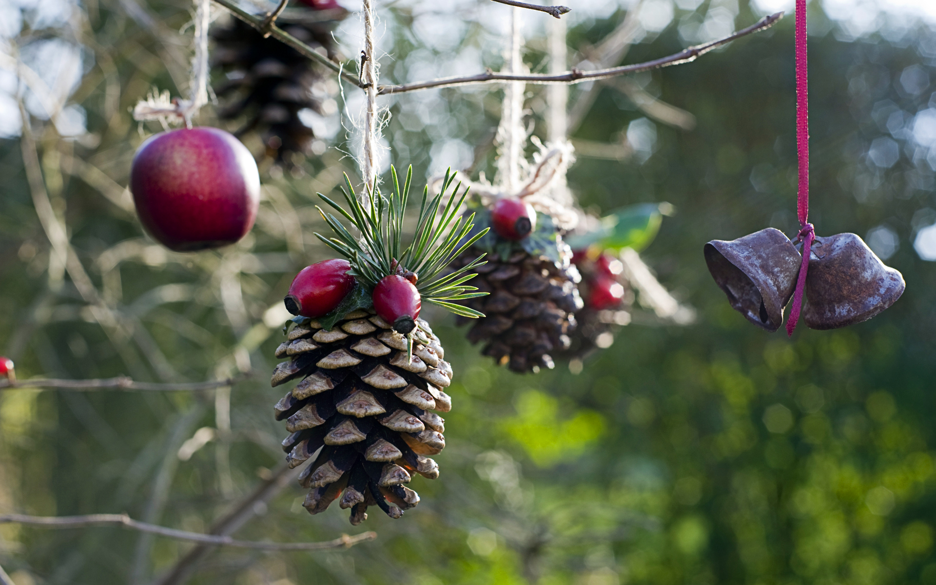 Homemade outdoor holiday decorations made from natural for Hanging christmas decorations