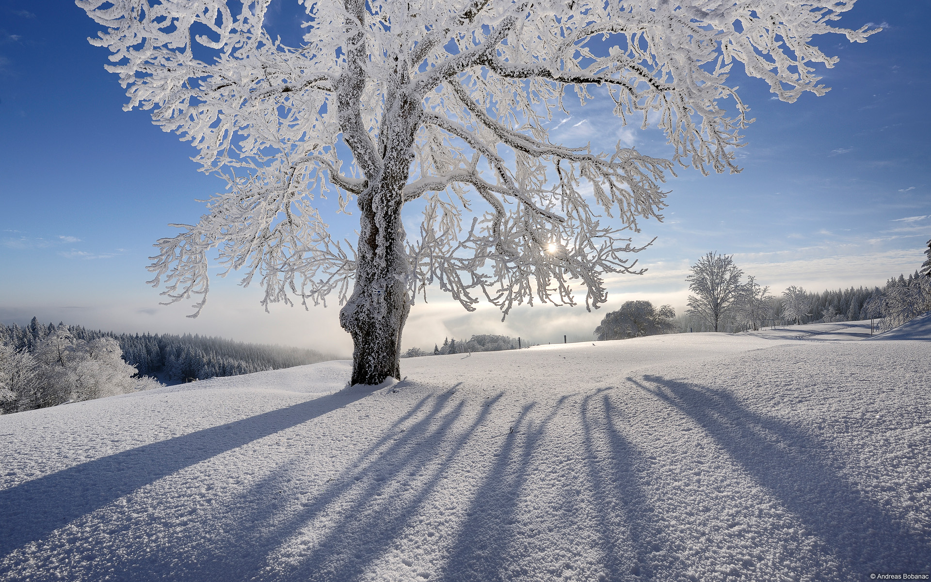 Winter Wallpaper For My Desktop Winter and Christmas desktop backgrounds HQ Wallpapers HQ