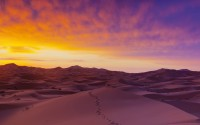 Sand dunes illuminated at sunrise, Erg Chebbi,  Sahara Desert, Morocco