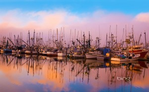 Fishing boats moored in Newport, Oregon