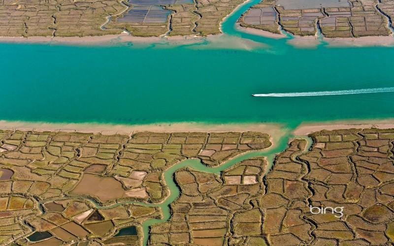 seudre river in france