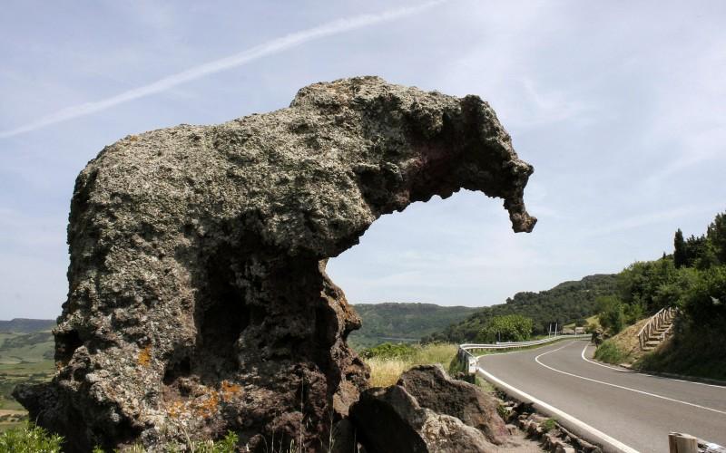Elephant Rock near Castelsardo, Sardinia, Italy