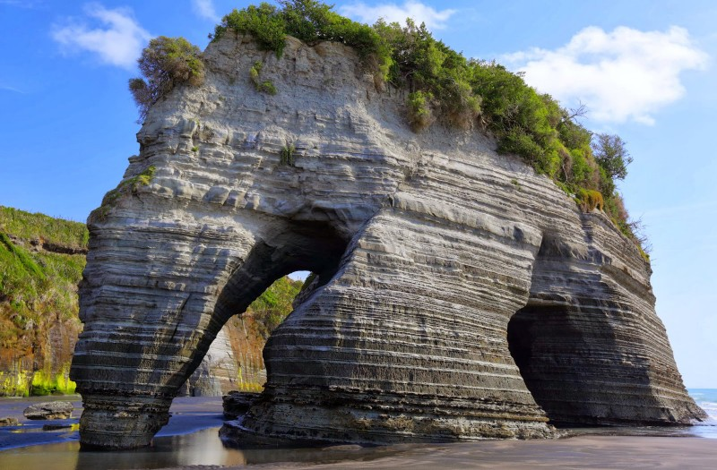 Elephant Rock in Taranaki, New Zealand